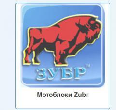 Мотоблок ZUBR
