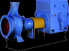 Mass pumps type BM, MMR