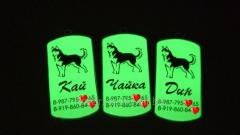 Адресник для собаки светящийся ночью в темноте зеленым и фиолетово синим оттенком (изготовление 1 час в киеве)