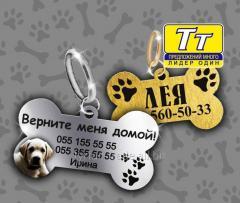 Адресники для животных (изготовление за 1 час)