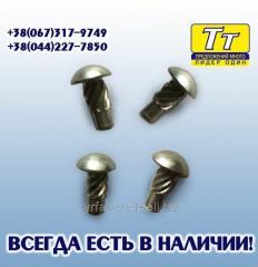 Специальный гвоздь (заклепка) крепления маркировочных и кузовных табличек к ретро автомобилям.