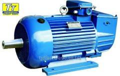 Электродвигатель 4мтм f 225 55квт/1000