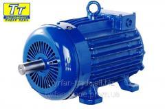 Электродвигатель 4МТН F 280 55квт/750