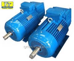 Электродвигатель 4МТН F 280 75квт/600