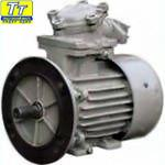 Электродвигатель АИММ280s4 110квт/1500
