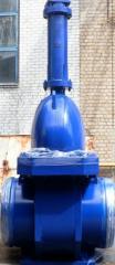 Wedge gate valve of Du700 Ru8,0mpa of L11113-700