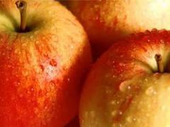 Fruit for expor