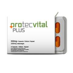 Капсулы для потенции Protecvital Plus (Протеквитал Плас)