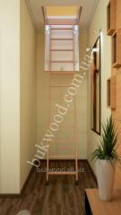 Чердачная лестница Easywood Eco Standard 120х60