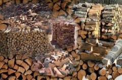 Dry to Buy firewood, Ukraine