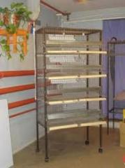 Cages for quails and chinchillas
