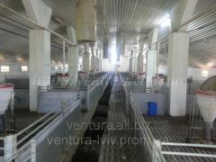 Ventilation for pig farms (pigsty)