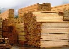 Board joiner's of a pine Kiev