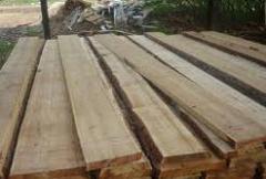 Board joiner's maple Ukraine