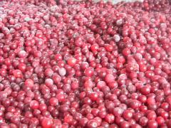 Ягоды красной смородины замороженная