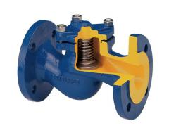 Backpressure flange valves for water