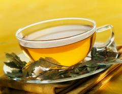 Yellow tea for bars, cafe, restaurants Fogs Huang