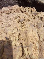 Фуз густой, с фильтра, и зажиренный перлит , Херсон производство , 15 тонн