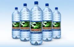 Вода минеральная лечебно-столовая, воды минеральные, Украина