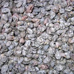 Izyum sultana grape (sabz)