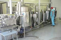 Production line of natural confectionery fillings