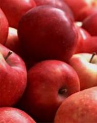 Apples Dzhonagored