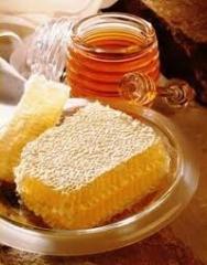 Продукция пчеловодства