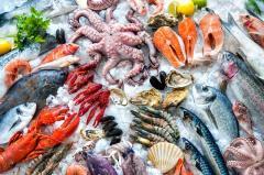 Холодильное оборудование для заморозки рыбы и