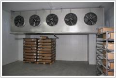 Холодильное оборудование для заморозки мяса и
