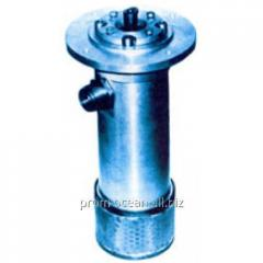 Pumps screw