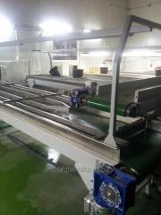 Conveyor system for the supply of vegetables in