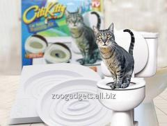 Toilets for cats