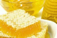 Honey bee for expor