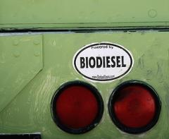 Equipment for the production of biodiesel under