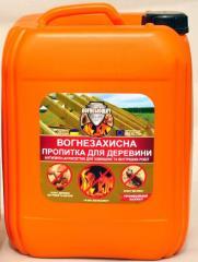 Fire-protective antiseptics