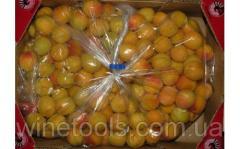 Пакеты для хранения яблок TrendLife™ MA