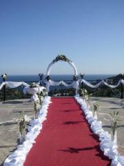 Оформление свадебных арок, арки свадебные,