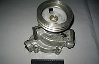 Водяной насос (помпа) КАМАЗ 740.1307010-02