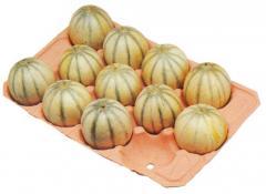 Поддоны для дынь (Melon trays)