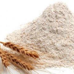 Rye flour. In Ukraine / Export