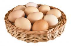 Яйца свежие