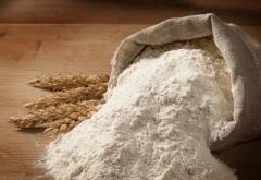 WIDELAND EXPORT продает муку пшеничную на экспорт