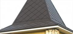 Roofing scales, roofing and front materials,
