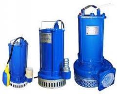 Pogruzhny pump GNOM 100h25