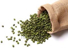 Зеленого кофе экстракт (хлоргеновая кислота...