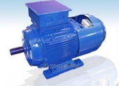 Electric motors Asynchronous-2r, 4P, 6r