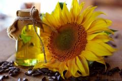 Sunflower oil refined, deodorized, frozen, Mark P,
