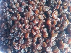 Dark natural sundried raisins from Iran