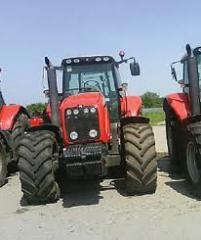 Трактор MF 8480
