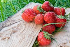 Organic Frozen Strawberry (IQF), class A